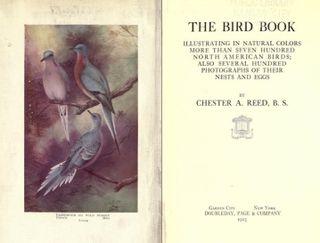 1 birdbook