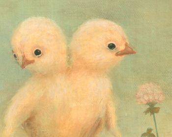 Chicks low2