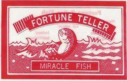 Fortune+telling+fish