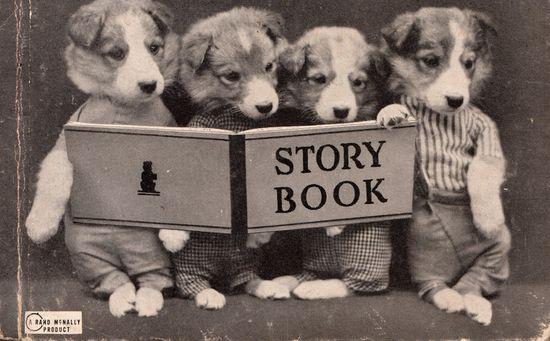 Puppies reading