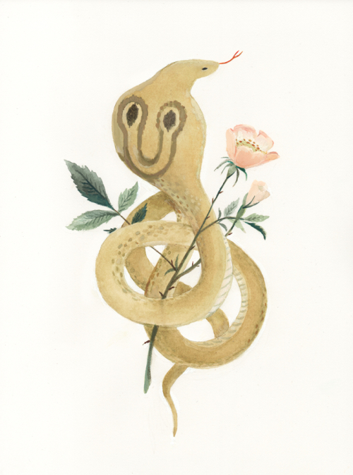 SerpentAndBloomTwitter