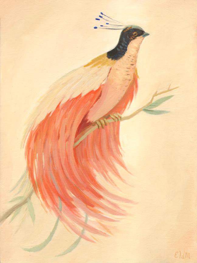 BirdofParadiseLow